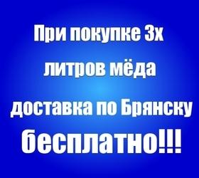 При покупке трёх литров мёда доставка по Брянску бесплатно