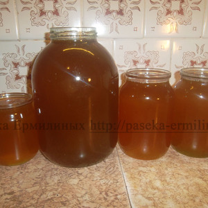 Разнотравно-гречишный мёд